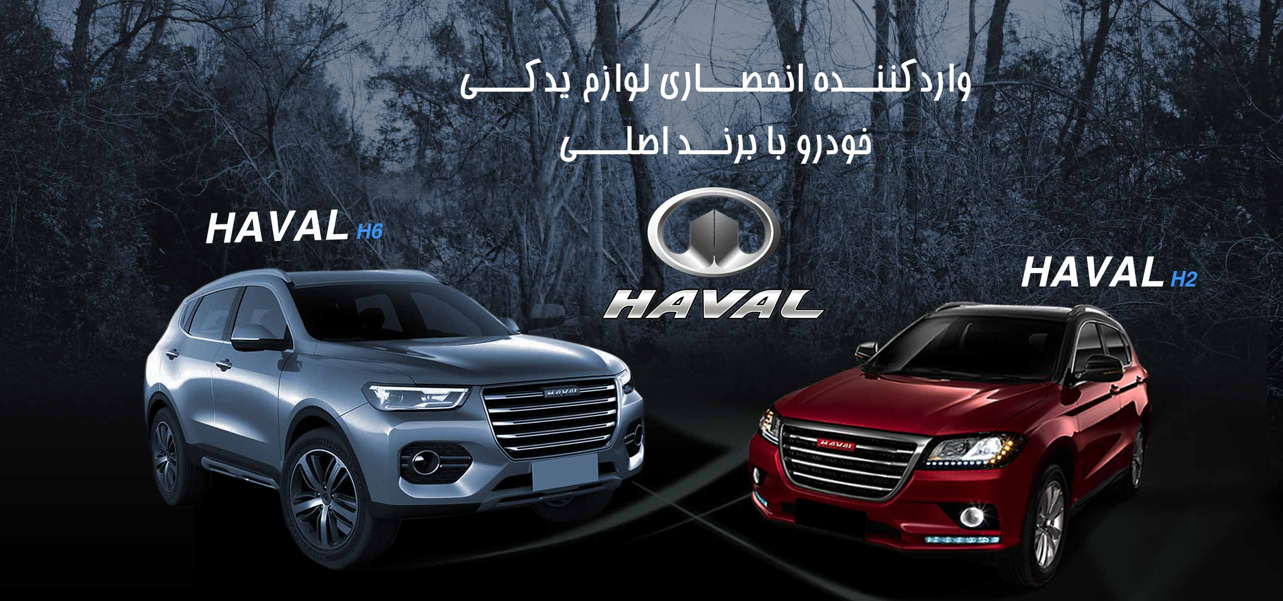 haval2